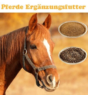 Dies ist ein Bild vom Reico Pferdefutter Ergänzungsfutter und einem Pferd